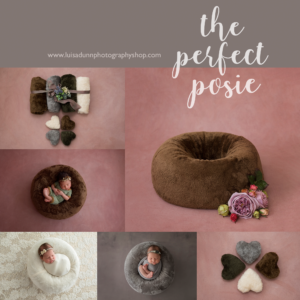 The Perfect Posie®  Package