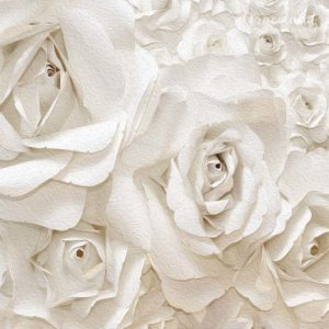 White Wonderwall of Paper Roses