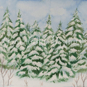 Pine Forest Frost