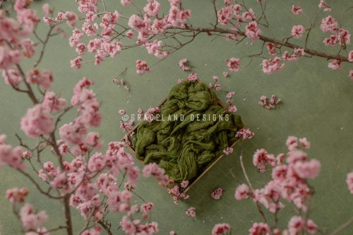 Green Spring Surrounded_master